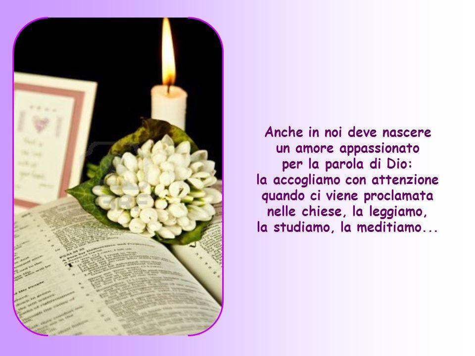 Anche in noi deve nascere un amore appassionato per la parola di Dio: la accogliamo con attenzione quando ci viene proclamata nelle chiese, la leggiamo, la studiamo, la meditiamo...