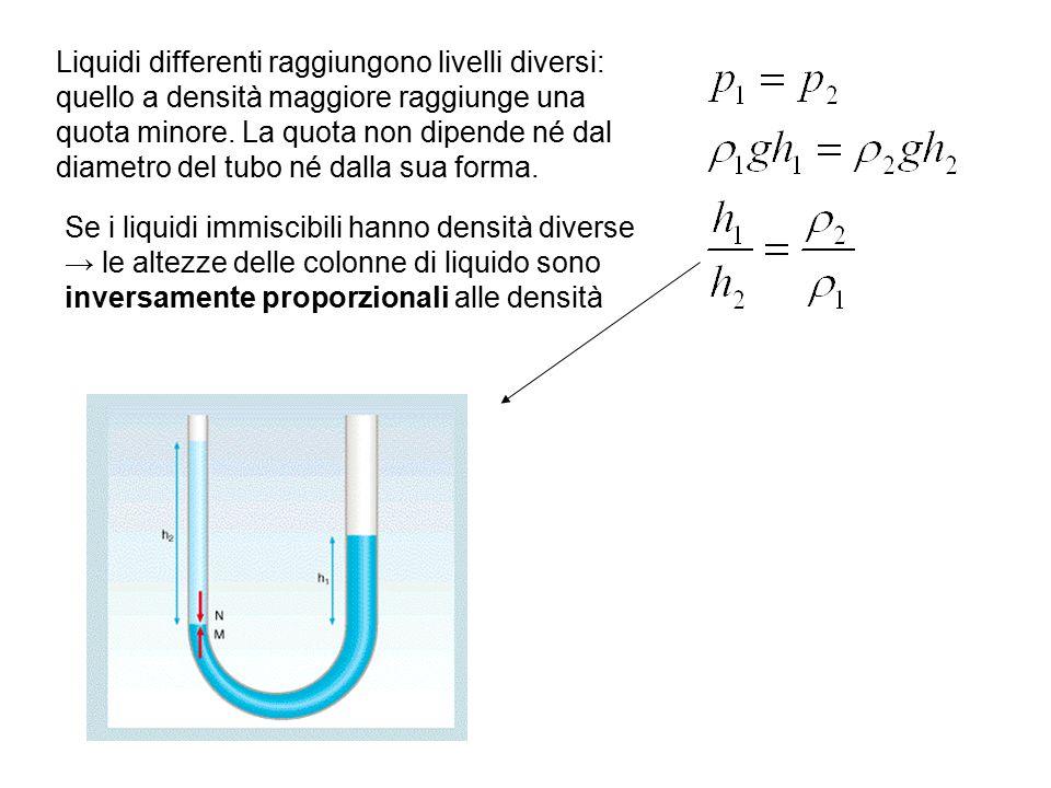 Liquidi differenti raggiungono livelli diversi: