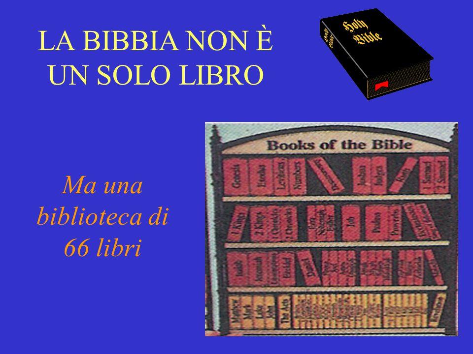 La Bibbia non è un SOLO libro