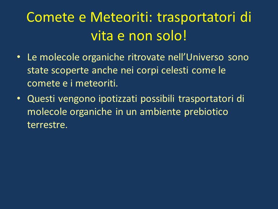 Comete e Meteoriti: trasportatori di vita e non solo!