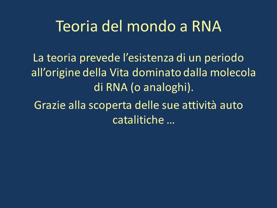 Teoria del mondo a RNA