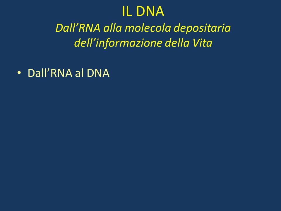 IL DNA Dall'RNA alla molecola depositaria dell'informazione della Vita