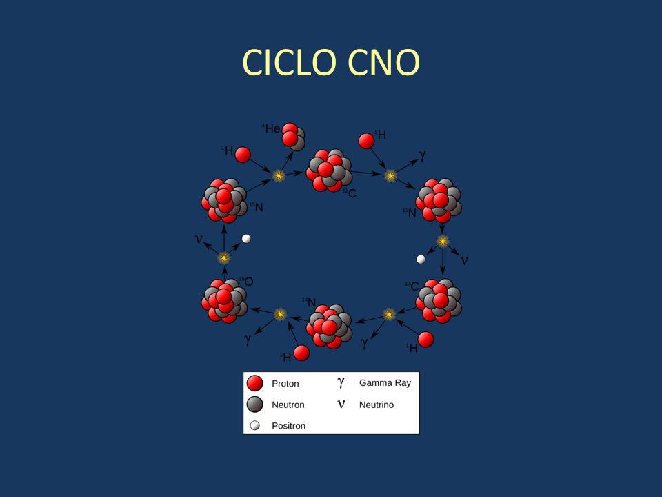 CICLO CNO