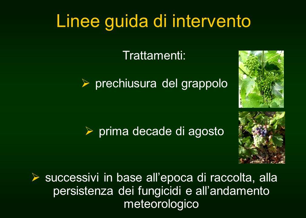 Linee guida di intervento