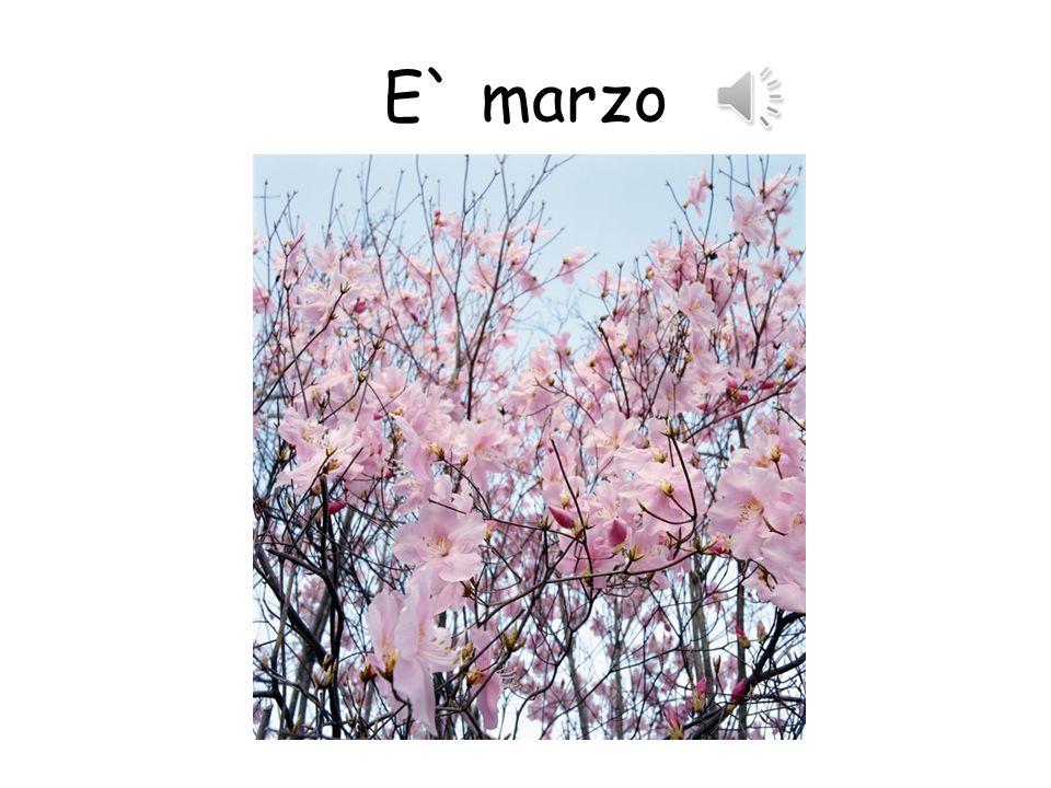 E` marzo