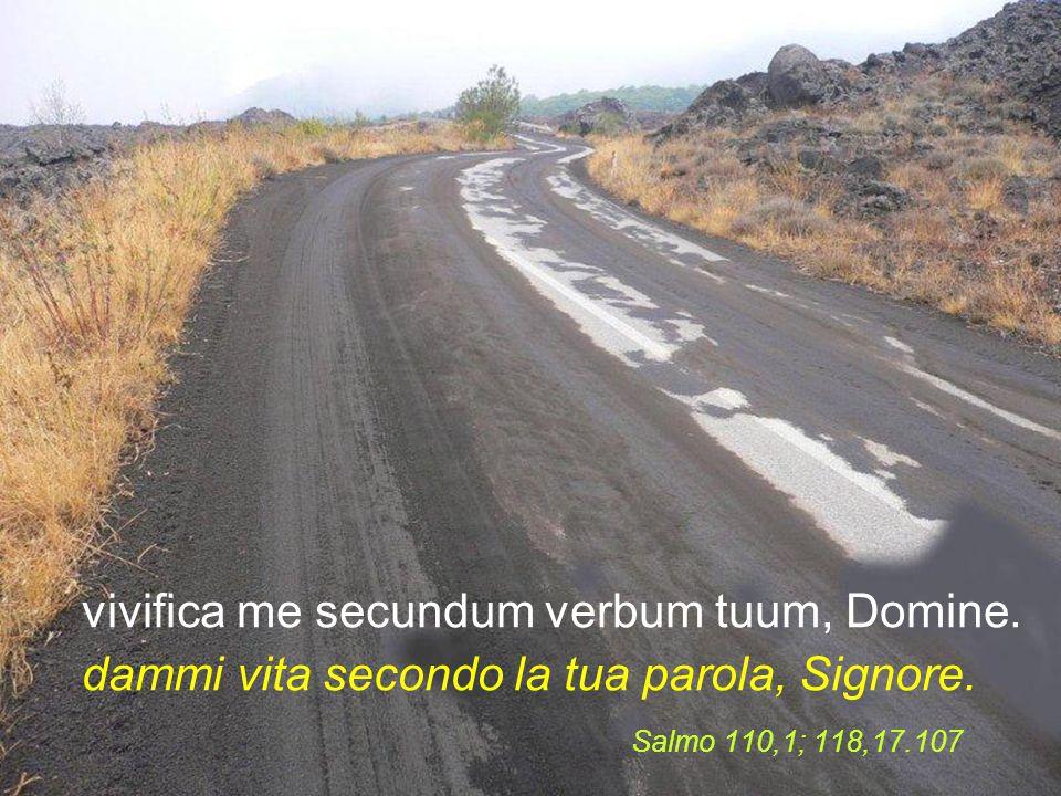 vivifica me secundum verbum tuum, Domine.