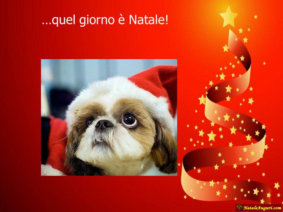 …quel giorno è Natale!