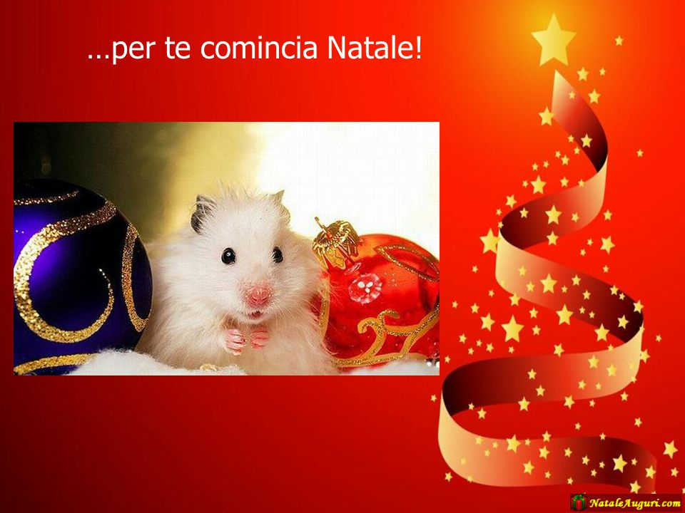 …per te comincia Natale!