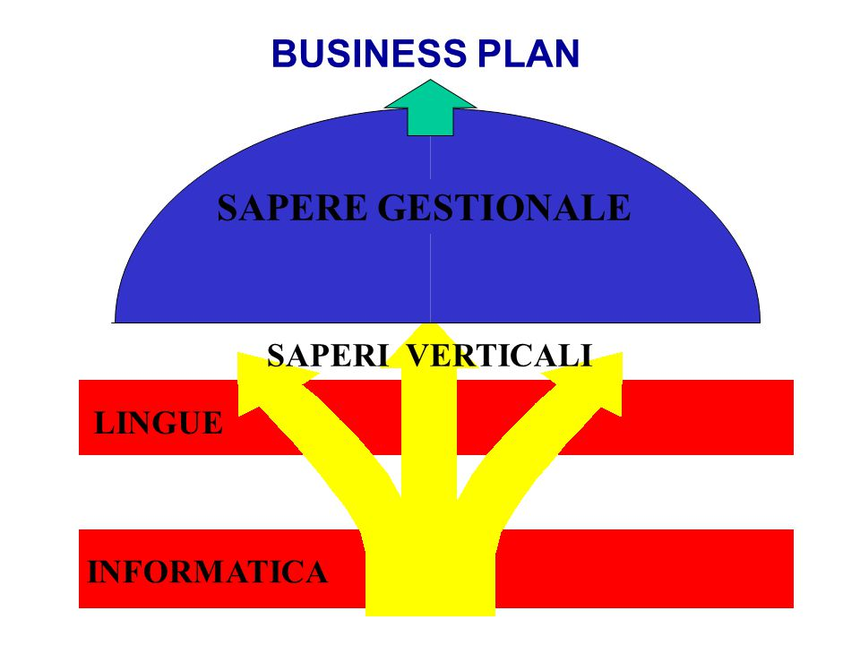 BUSINESS PLAN SAPERE GESTIONALE SAPERI VERTICALI LINGUE INFORMATICA