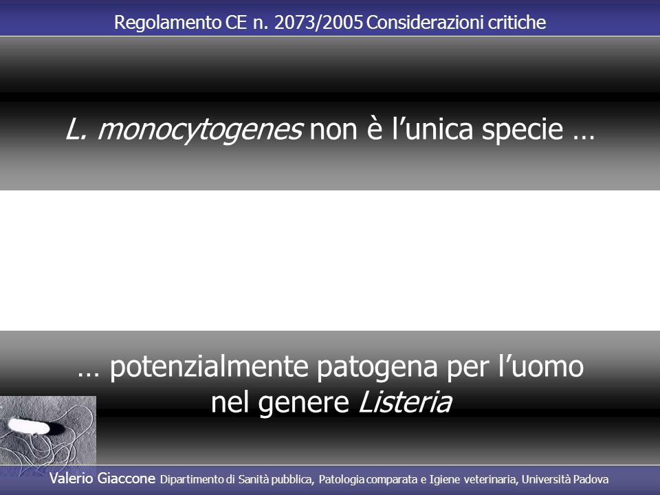 L. monocytogenes non è l'unica specie …
