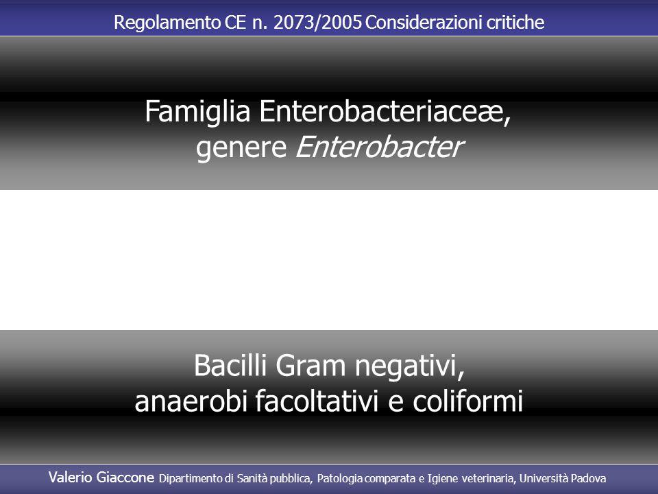 Famiglia Enterobacteriaceæ, genere Enterobacter