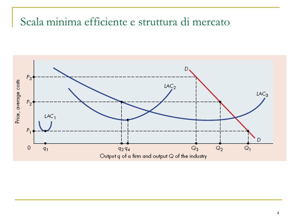 Scala minima efficiente e struttura di mercato