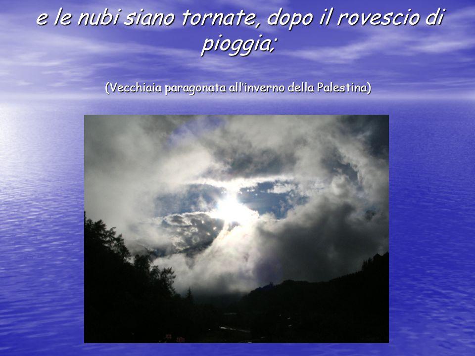 e le nubi siano tornate, dopo il rovescio di pioggia; (Vecchiaia paragonata all'inverno della Palestina)