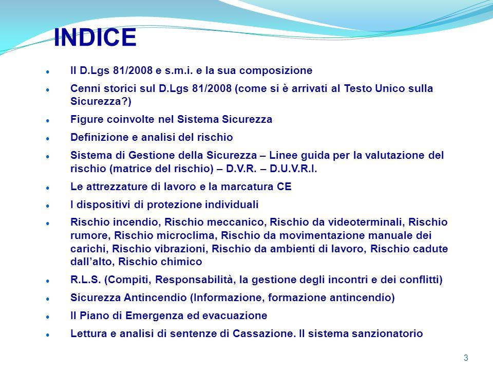INDICE Il D.Lgs 81/2008 e s.m.i. e la sua composizione