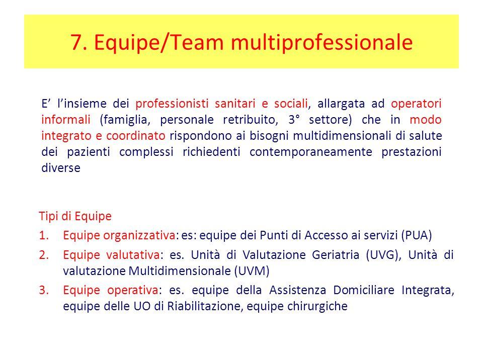 7. Equipe/Team multiprofessionale