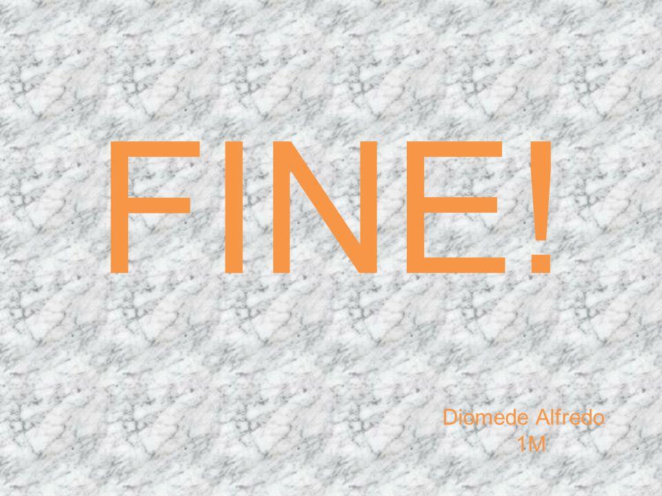 FINE! Diomede Alfredo 1M