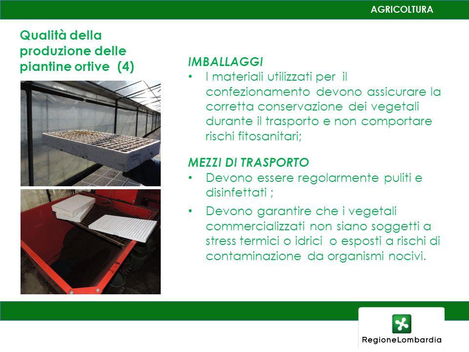 Qualità della produzione delle piantine ortive (4)