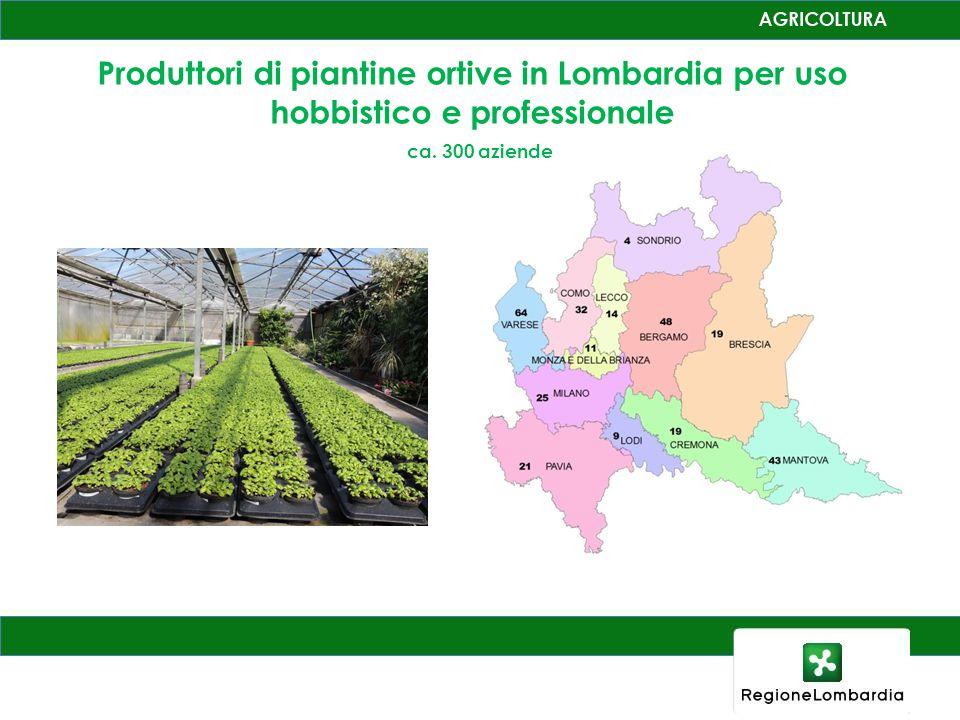 Produttori di piantine ortive in Lombardia per uso hobbistico e professionale