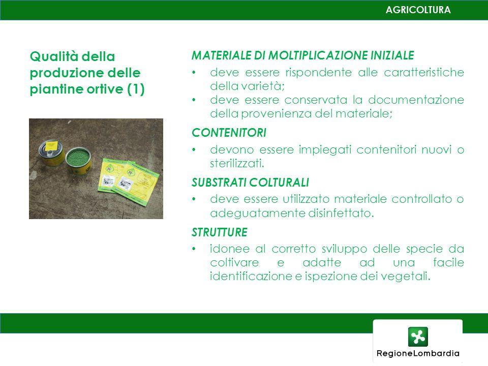 Qualità della produzione delle piantine ortive (1)
