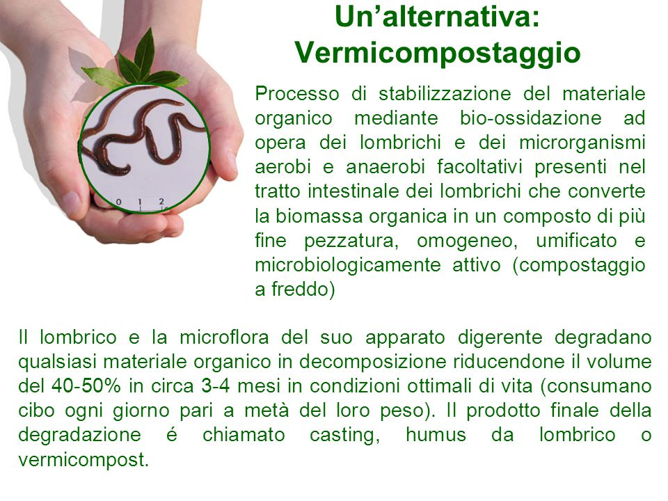Un'alternativa: Vermicompostaggio
