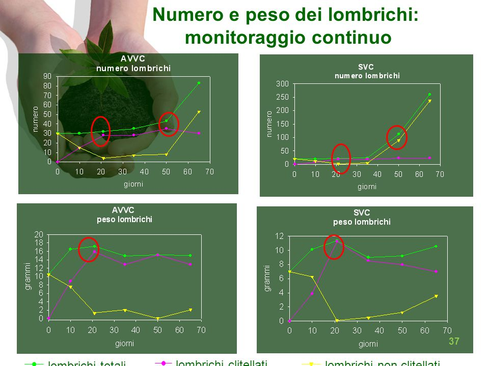 Numero e peso dei lombrichi: monitoraggio continuo