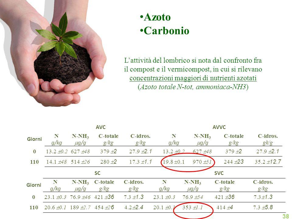 Azoto Carbonio.