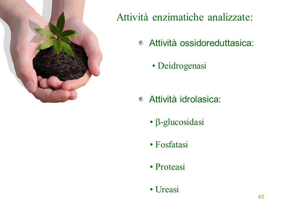 Attività enzimatiche analizzate: