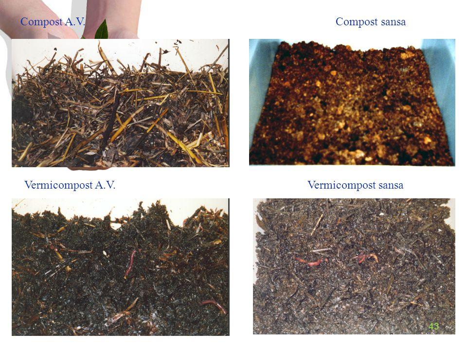 Compost A.V. Compost sansa Vermicompost A.V. Vermicompost sansa