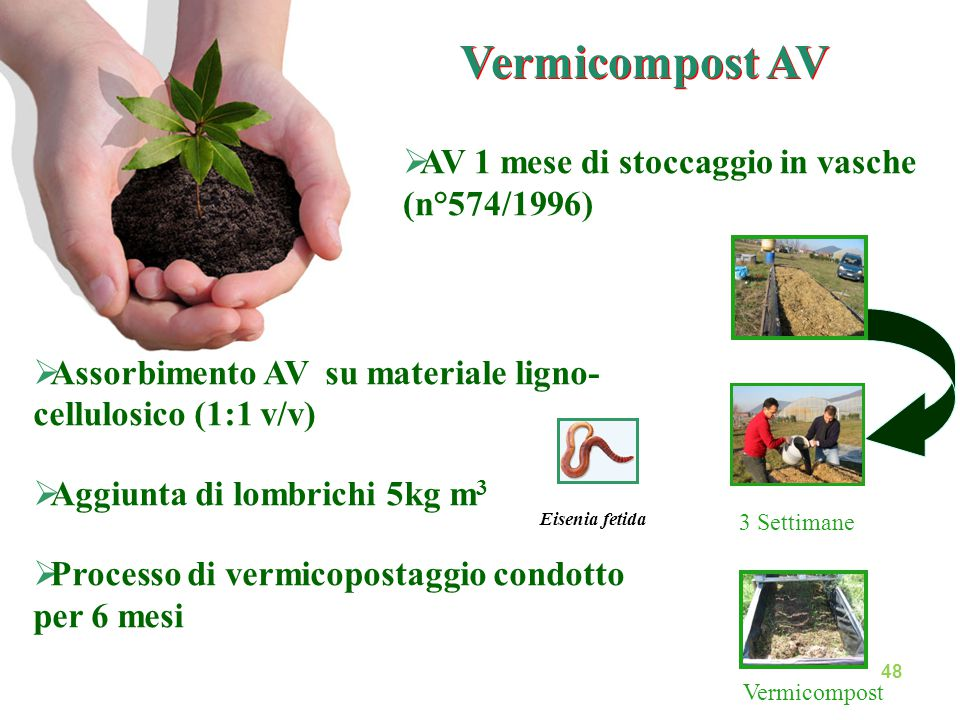 Vermicompost AV AV 1 mese di stoccaggio in vasche (n°574/1996)
