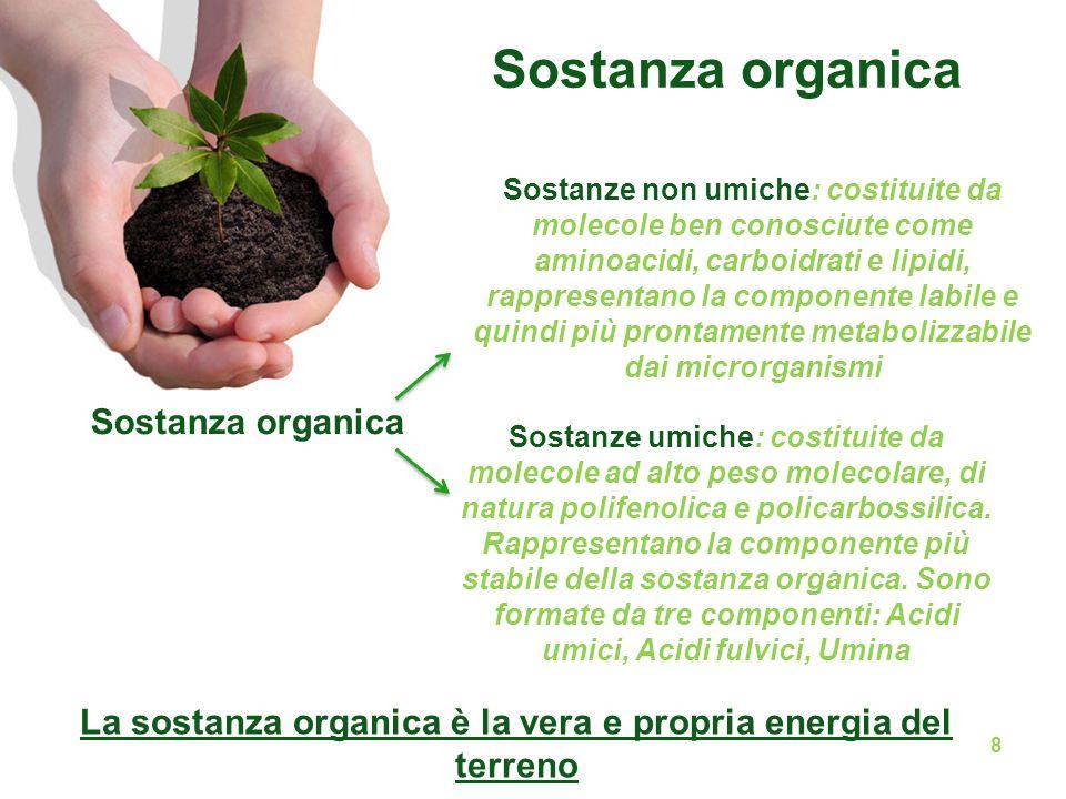 La sostanza organica è la vera e propria energia del terreno