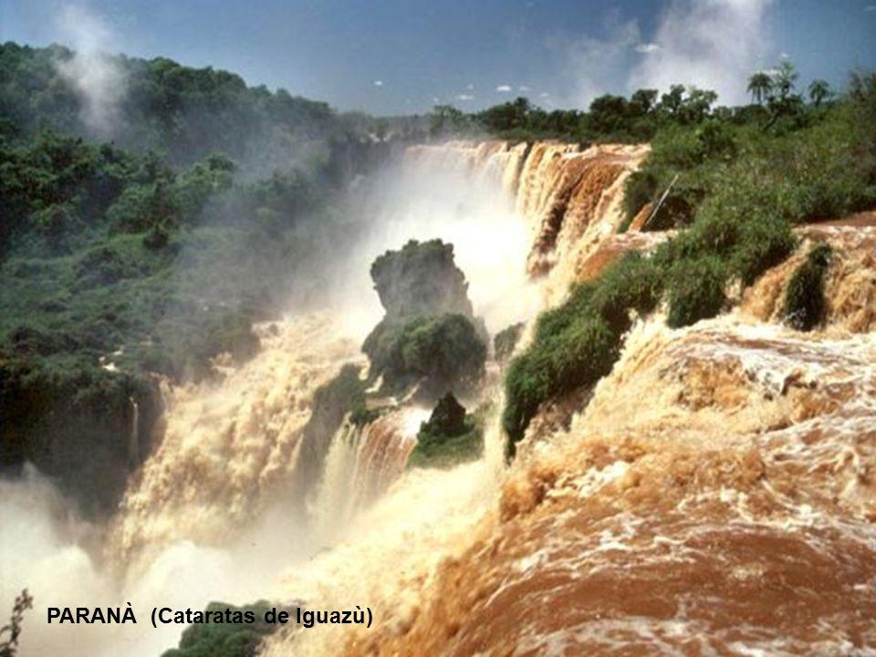 PARANÀ (Cataratas de Iguazù)
