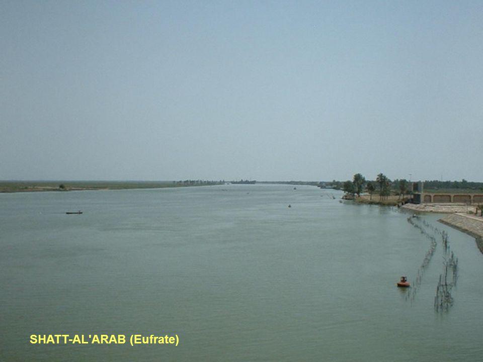 SHATT-AL ARAB (Eufrate)