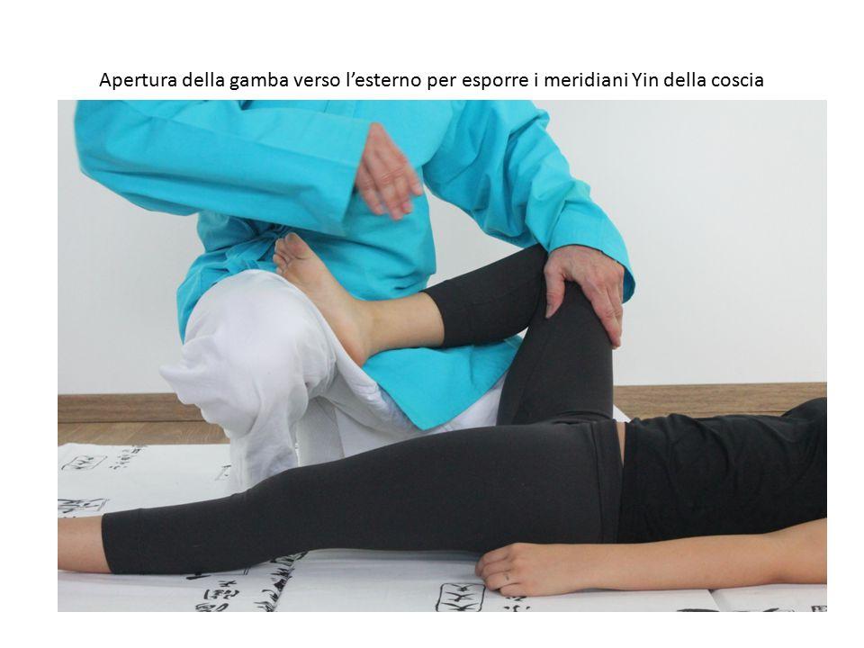 Apertura della gamba verso l'esterno per esporre i meridiani Yin della coscia