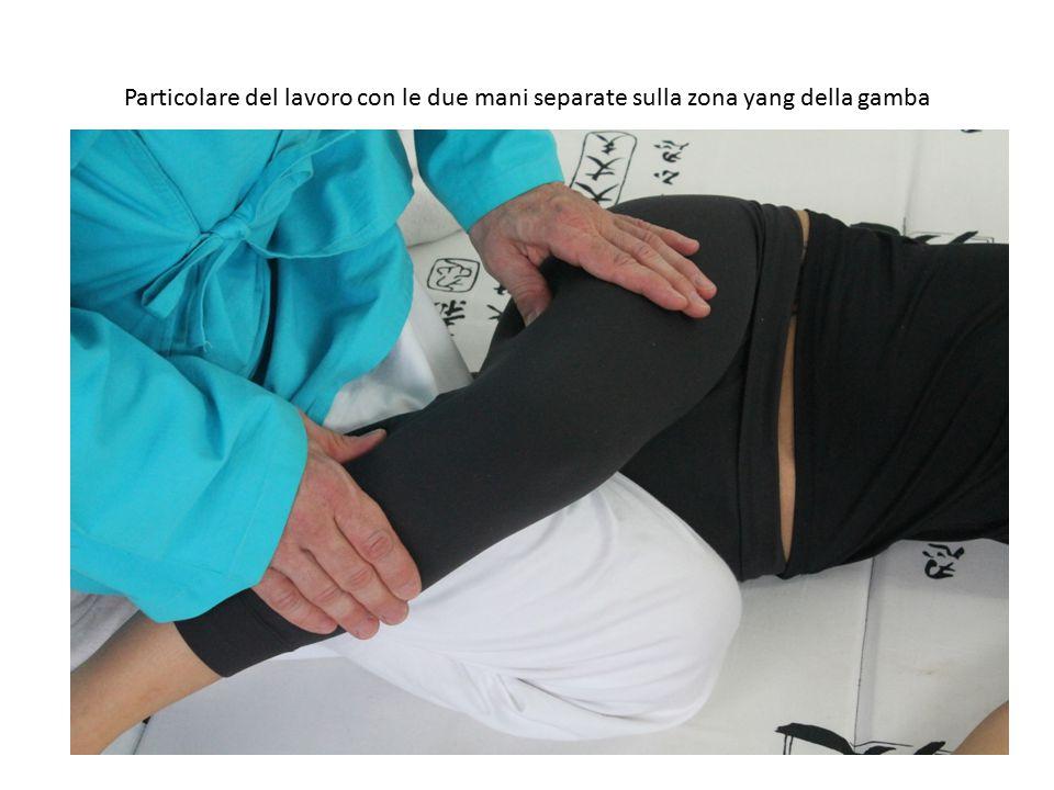 Particolare del lavoro con le due mani separate sulla zona yang della gamba