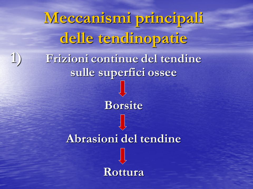 Meccanismi principali delle tendinopatie