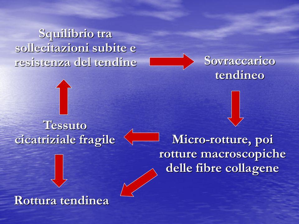 Squilibrio tra sollecitazioni subite e resistenza del tendine