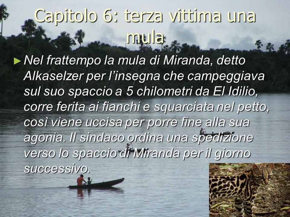 Capitolo 6: terza vittima una mula