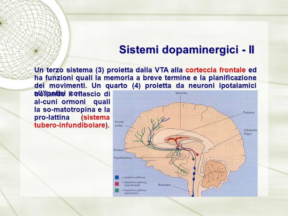 Sistemi dopaminergici - II