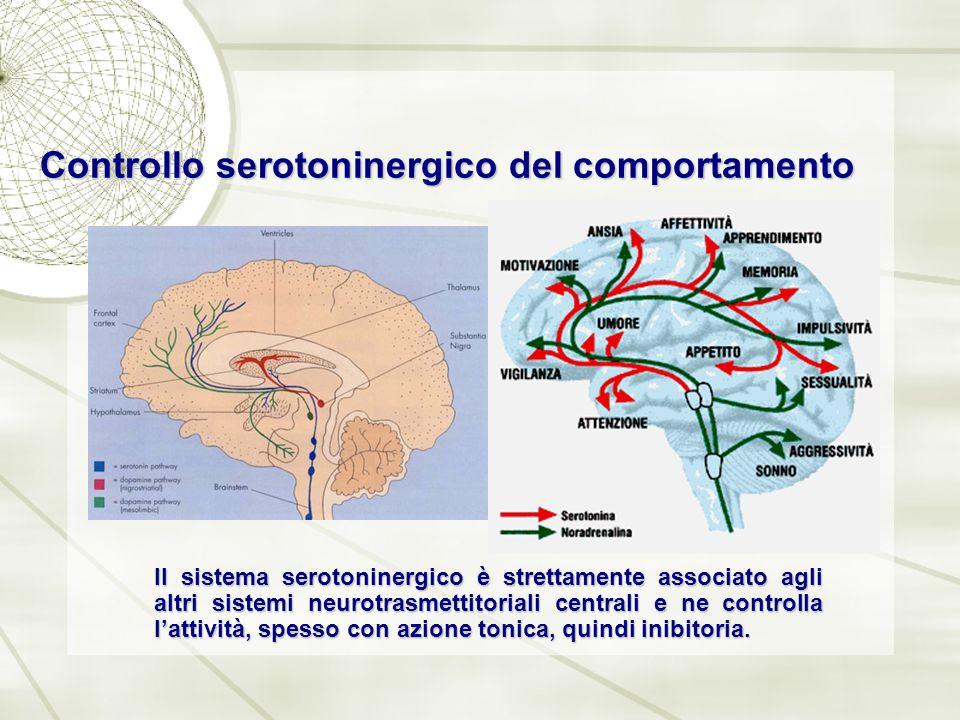 Controllo serotoninergico del comportamento