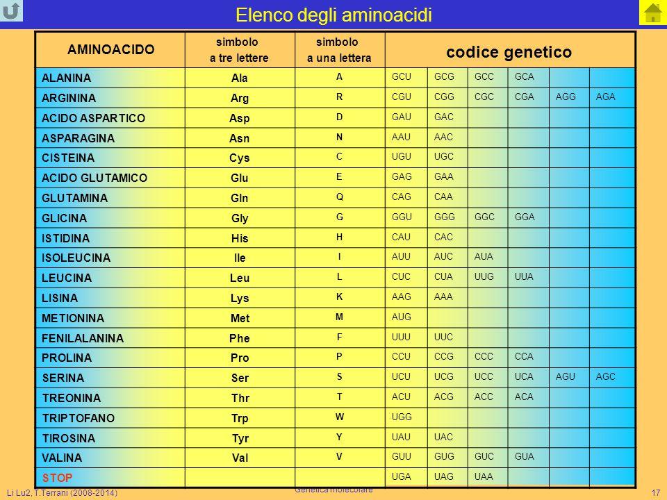 Elenco degli aminoacidi