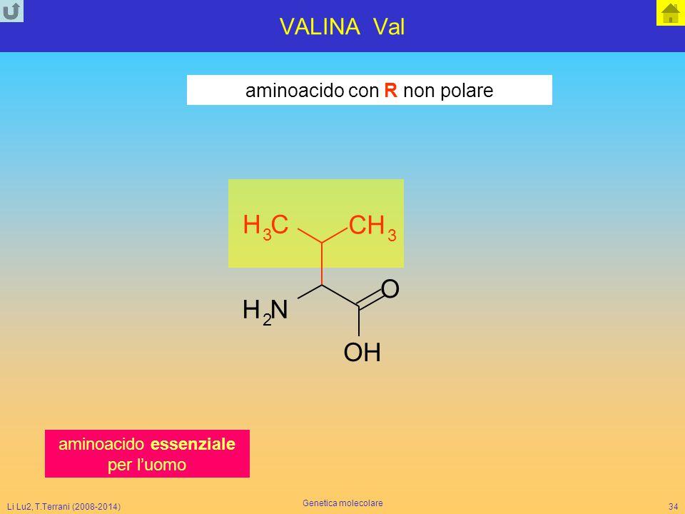 N H C O VALINA Val aminoacido con R non polare 3 2