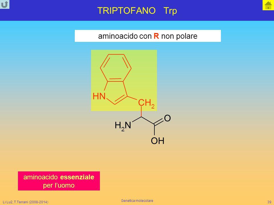 TRIPTOFANO Trp N H C O aminoacido con R non polare