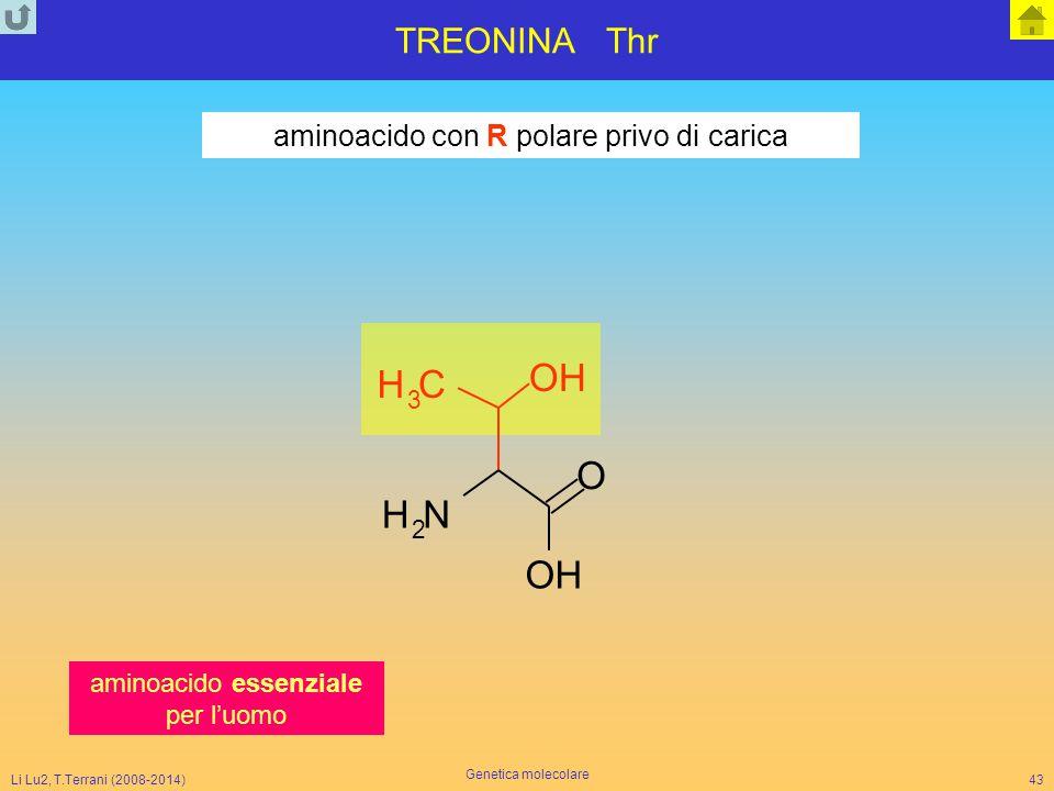 O H H C O H N O H TREONINA Thr aminoacido con R polare privo di carica