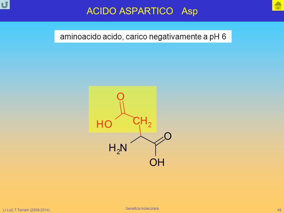 aminoacido acido, carico negativamente a pH 6