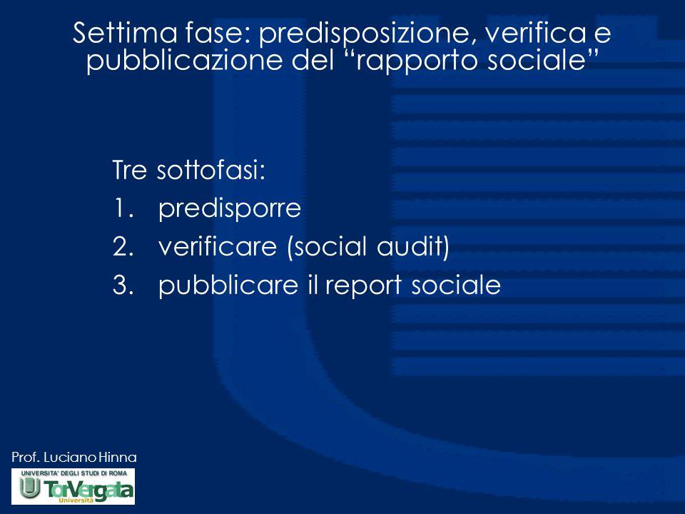 Settima fase: predisposizione, verifica e pubblicazione del rapporto sociale