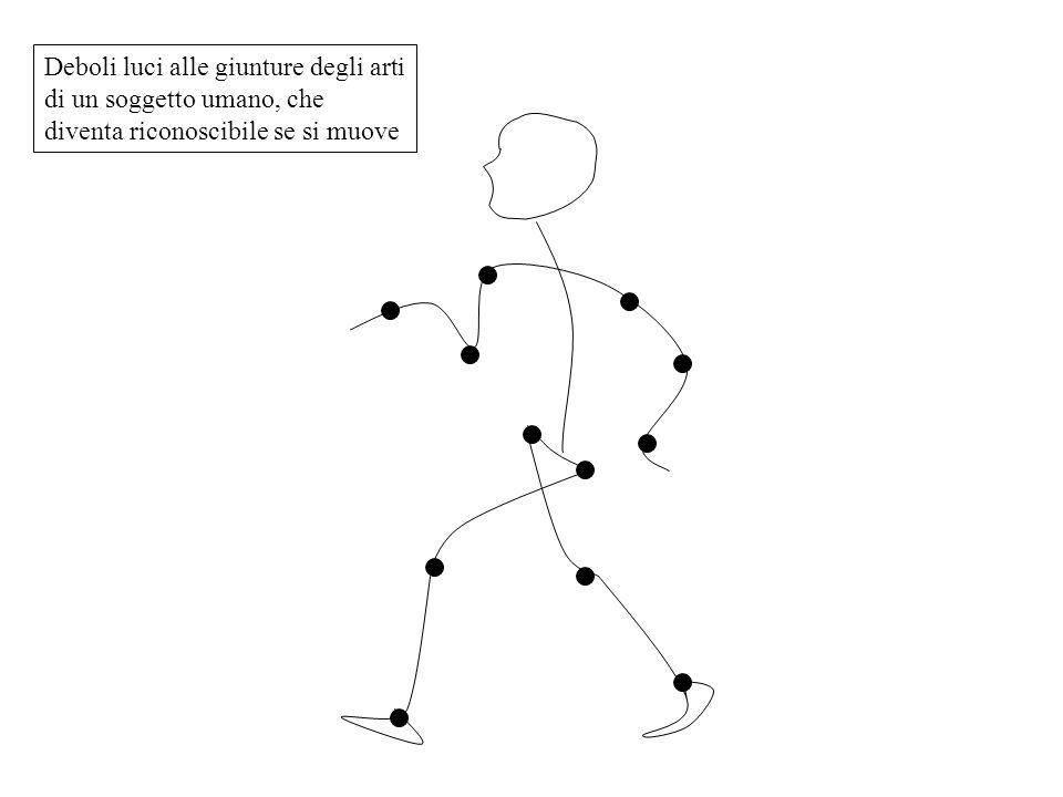 Deboli luci alle giunture degli arti di un soggetto umano, che diventa riconoscibile se si muove