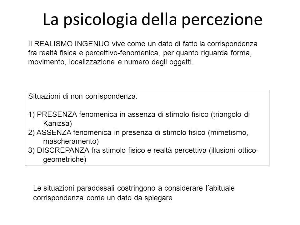 La psicologia della percezione
