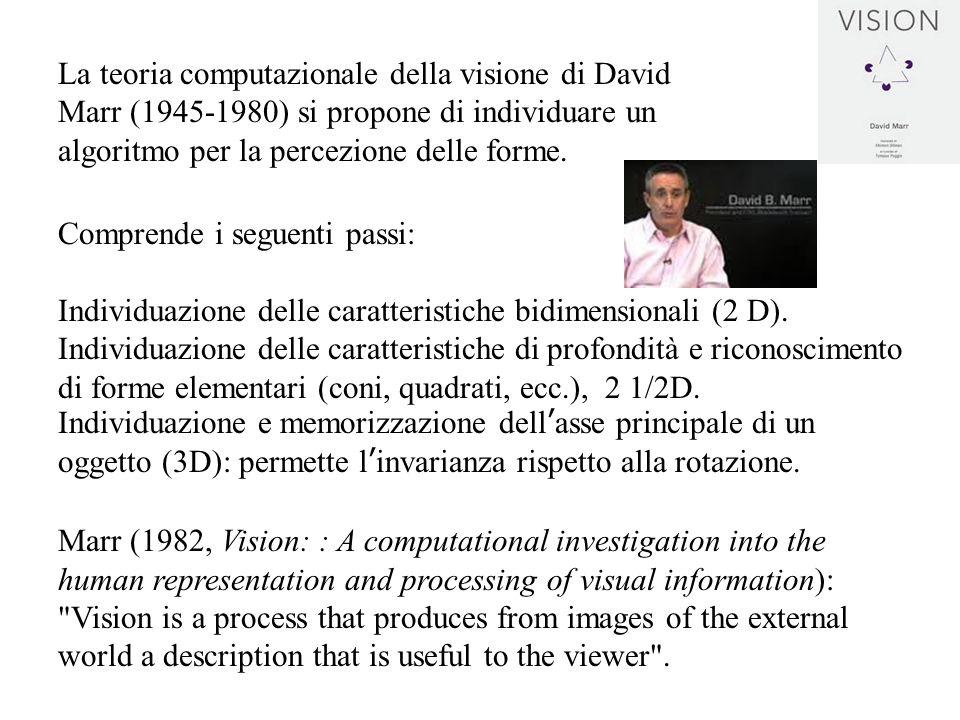 La teoria computazionale della visione di David Marr (1945-1980) si propone di individuare un algoritmo per la percezione delle forme.
