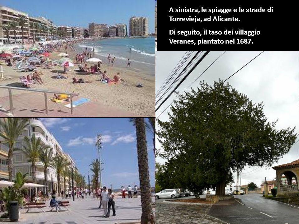 A sinistra, le spiagge e le strade di Torrevieja, ad Alicante.