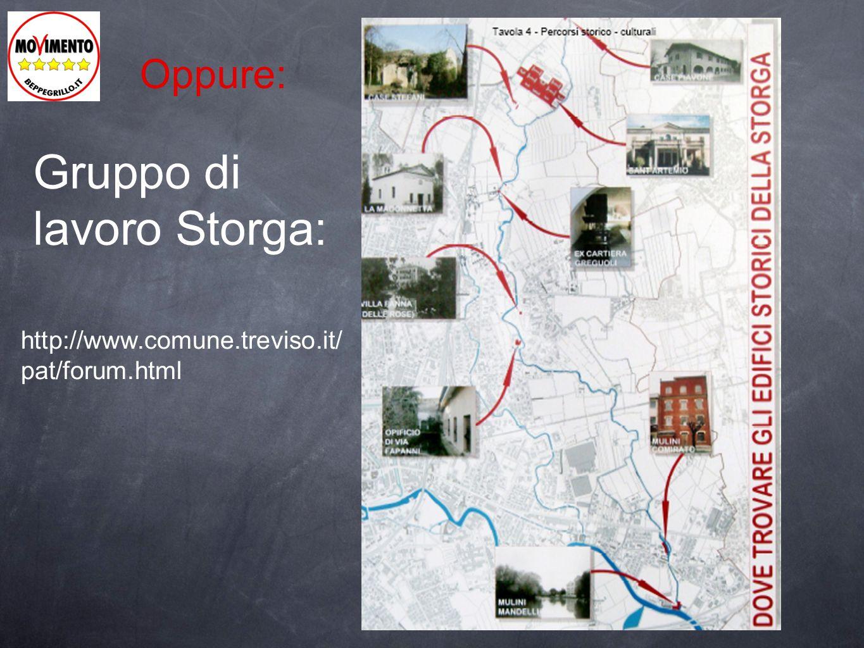 Gruppo di lavoro Storga: